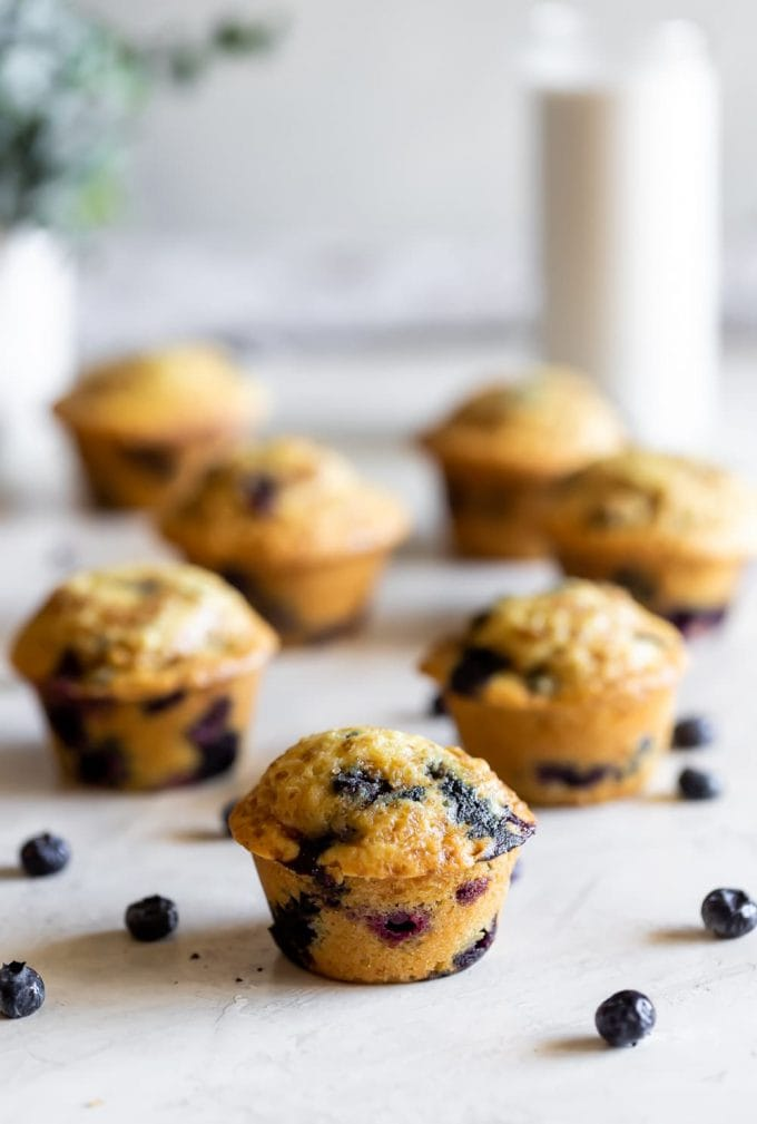 easy blueberry muffins on table with blueberries all around