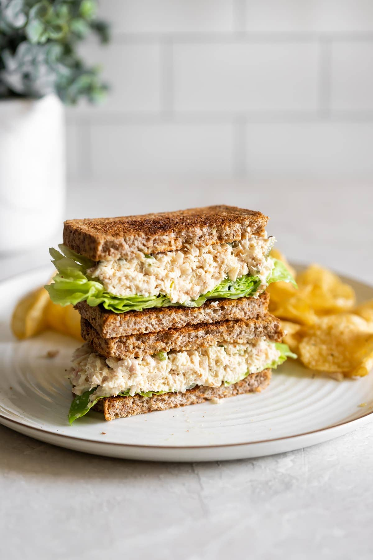 tuna salad sandwich with boston lettuce and chips on a white plate with a white background